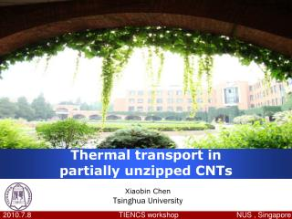 Thermal transport in partially unzipped CNTs