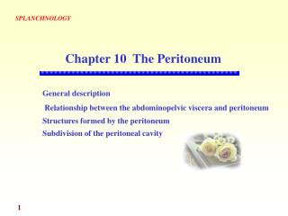 General description Relationship between the abdominopelvic viscera and peritoneum Structures formed by the peritoneum S
