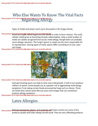 Who Else Wants To Know The Vital Facts Regarding Allergy