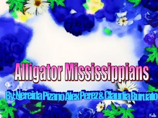 Alligator Mississippians