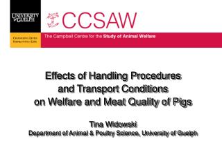 Effects of Handling Procedures  and Transport Conditions  on Welfare and Meat Quality of Pigs