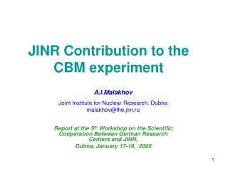 JINR Contribution to the CBM experiment