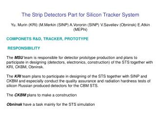 The Strip Detectors Part for Silicon Tracker System