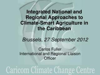 Carlos Fuller International and Regional Liaison Officer