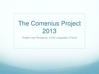 The Comenius Project 2013