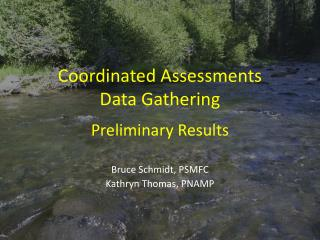 Coordinated Assessments Data Gathering