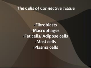 The Cells of Connective Tissue
