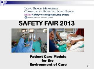 SAFETY FAIR 2013