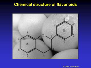 Chemical structure of flavonoids