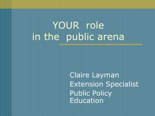 YOUR role in the public arena
