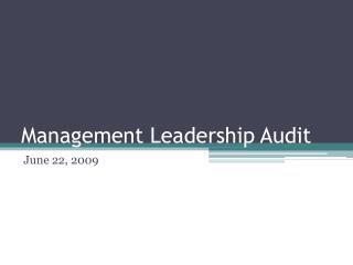 Management Leadership Audit