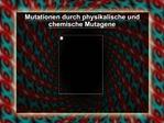 Mutationen durch physikalische und chemische Mutagene