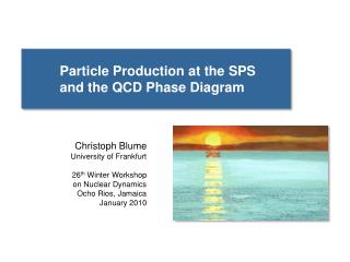 Particle Production at the SPS  	and the QCD Phase Diagram