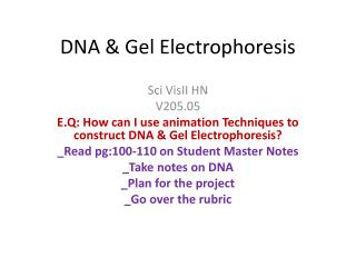 DNA & Gel Electrophoresis
