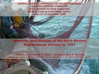 Spawning stock biomass of the North Western Mediterranean anchovy in  2007