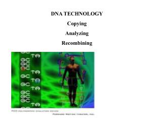 DNA TECHNOLOGY Copying Analyzing Recombining
