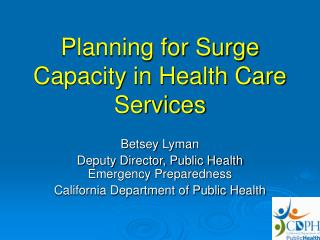 Planning for Surge Capacity in Health Care Services