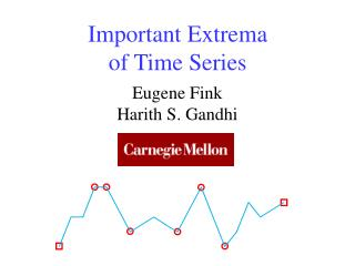 Important Extrema of Time Series