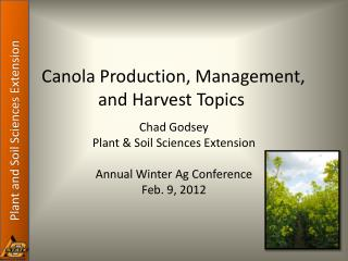 Canola Production, Management, and Harvest Topics