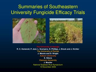 Summaries of Southeastern University Fungicide Efficacy Trials
