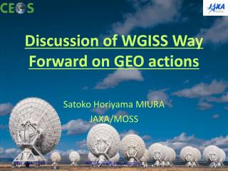 Discussion of WGISS Way Forward on GEO actions