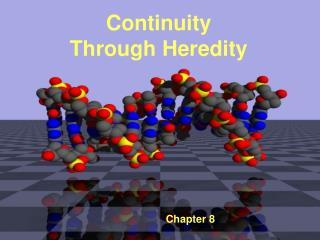 Continuity Through Heredity