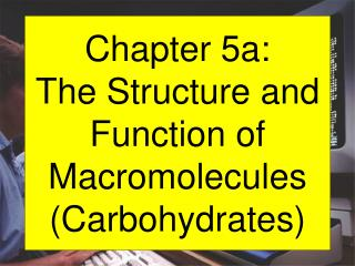 Chapter 5a: The Structure and Function of Macromolecules (Carbohydrates)