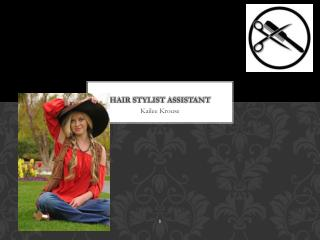 Hair Stylist Assistant