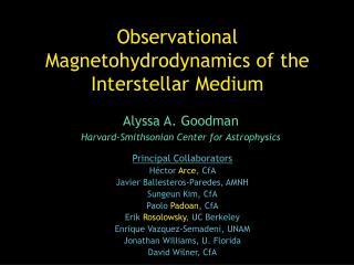 Observational Magnetohydrodynamics of the Interstellar Medium