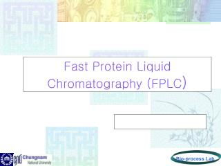 Fast Protein Liquid Chromatography (FPLC )