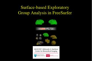 Surface-based Exploratory  Group Analysis in FreeSurfer