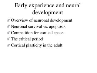 Early experience and neural development