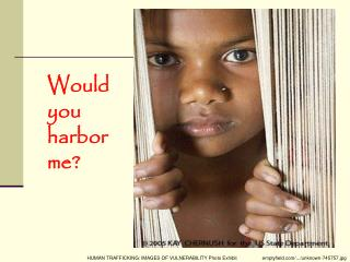 Would you harbor me?