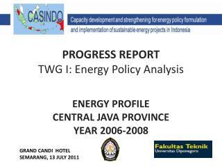 PROGRESS REPORT  TWG I: Energy Policy Analysis