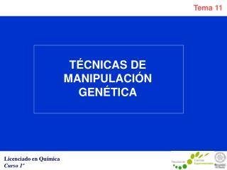 TÉCNICAS DE MANIPULACIÓN GENÉTICA