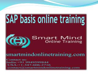 SAP basis online training | Online SAP basis Training in usa
