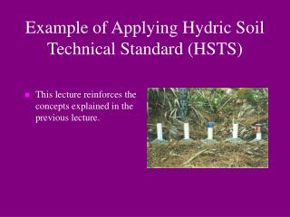 Example of Applying Hydric Soil Technical Standard (HSTS)