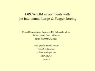 ORCA-LIM experiments with  the interannual Large & Yeager forcing