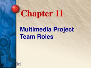 Multimedia Project Team Roles