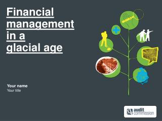 Financial  management  in a  glacial age