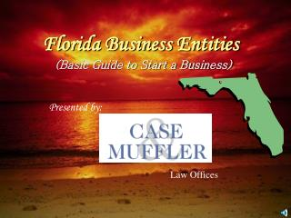 Florida Business Entities