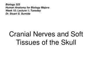 Biology 323 Human Anatomy for Biology Majors Week 10; Lecture 1; Tuesday Dr. Stuart S. Sumida