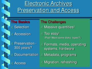 Electronic Archives Preservation and Access