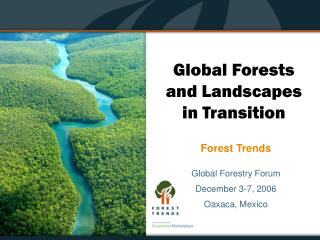 Global Forests and Landscapes in Transition