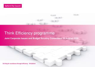 Think Efficiency programme