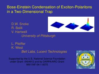 Bose-Einstein Condensation of Exciton-Polaritons in a Two-Dimensional Trap