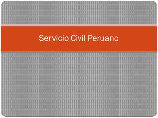 Se r vicio Civil  P erua n o