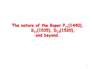 The nature of the Roper P 11 (1440),       S 11 (1535), D 13 (1520),  and beyond.