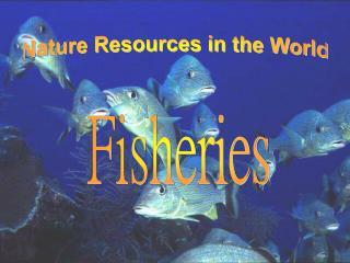 Nature Resources in the World