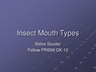 Insect Mouth Types